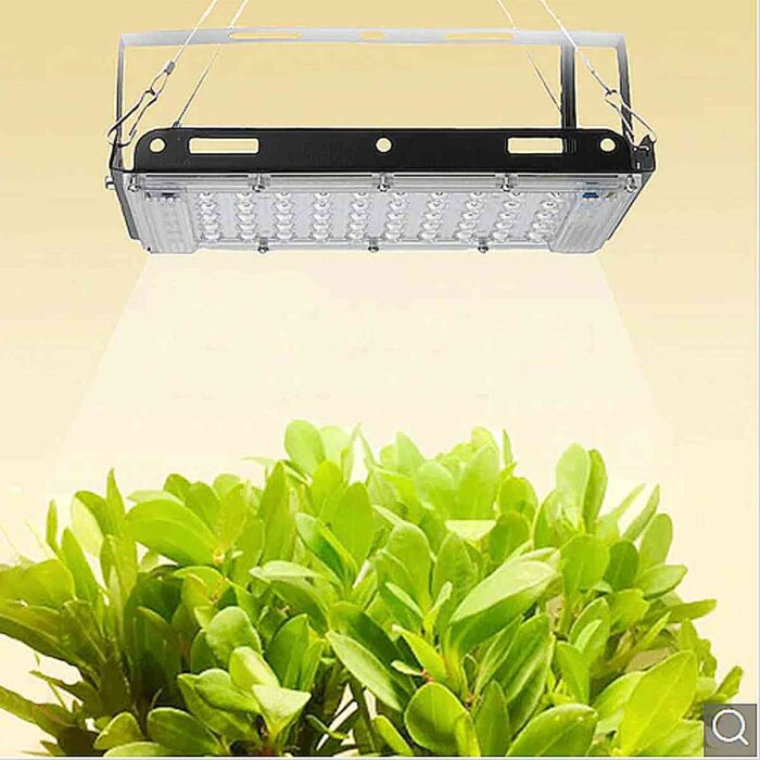 800W Full Spectral Lamp Plant Grow Light – Black EU Plug